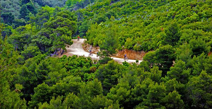 Skiathos Mountains - Forests - Biking
